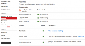 Channel Settings Features 300x163 Website Marketing  Link Directly from YouTube with Annotations and an Associated Website %page
