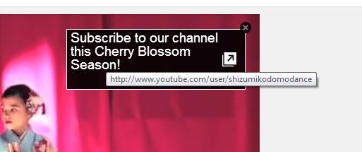 YouTubeannotation