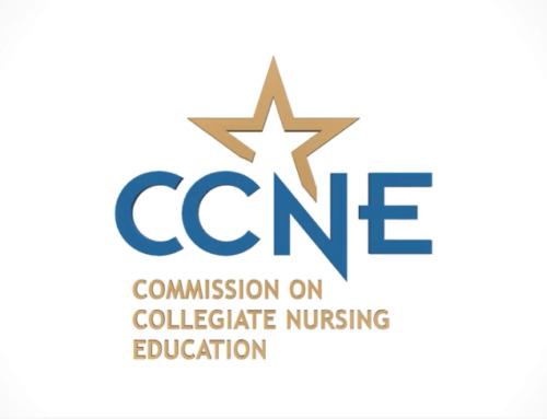 Animated Logo – CCNE
