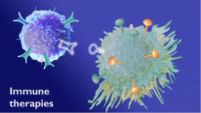 Animated frame showing immune therapies interacting with a cancer cell 1 400x225 Medical Animation Video %page