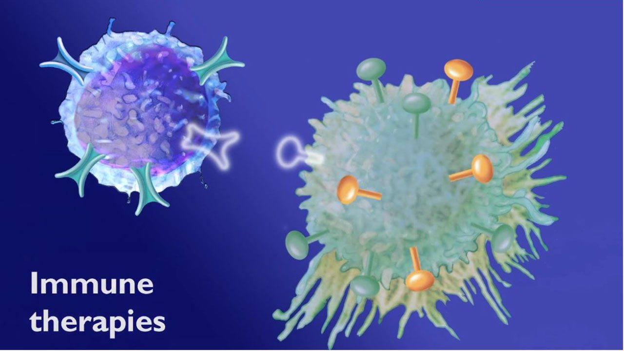 Animated frame showing immune therapies interacting with a cancer cell 1 Medical Animation Video %page