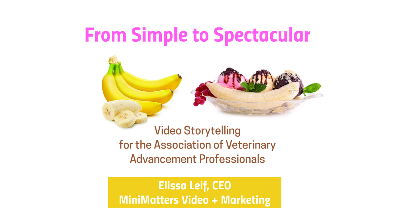 Elissa Leif CEO of MiniMatters presents Video Storytelling for the Association of Veterinary Advancement Professionals August 1 2019 Video Marketing and Storytelling at Your Level of Budget and Expertise %page