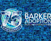 virtual event programs video showing the barker adoption agency 75th anniversary animated logo